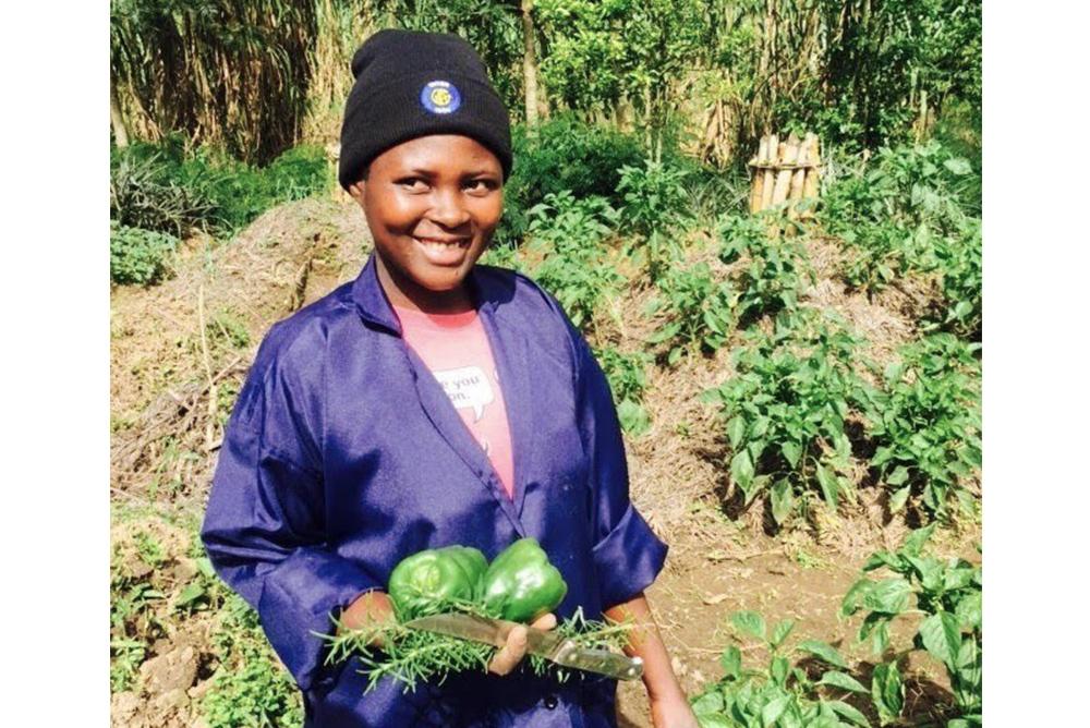 菜園や農業の生産性を向上させるための支援