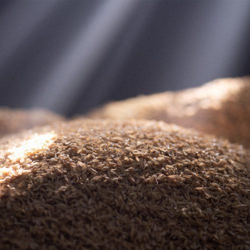 もみ殻が水と空気を浄化する新素材に!ソニーが生んだ「トリポーラス」とは
