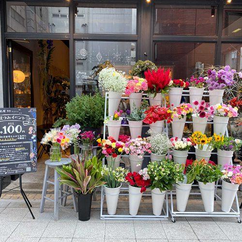 規格外の花を有効活用。「チャンスフラワー」でたくさんの笑顔を咲かせたい