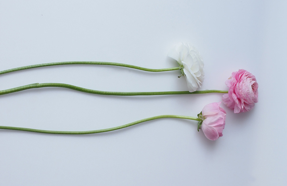 規格外の花を買い取り、チャンスフラワーに